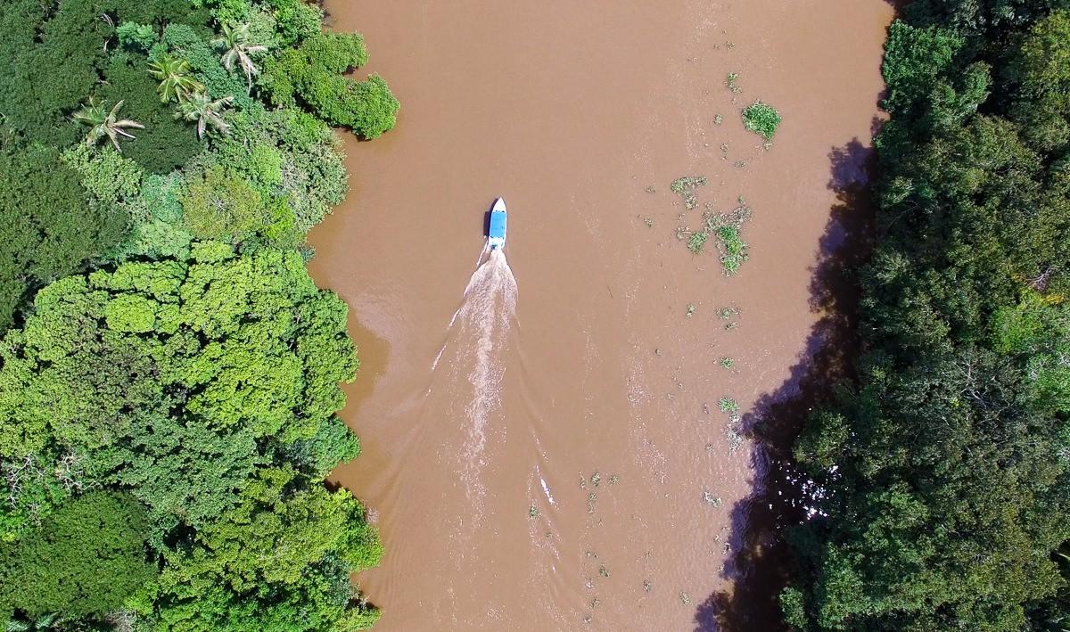 Rivière Sierpe (Costa Rica)